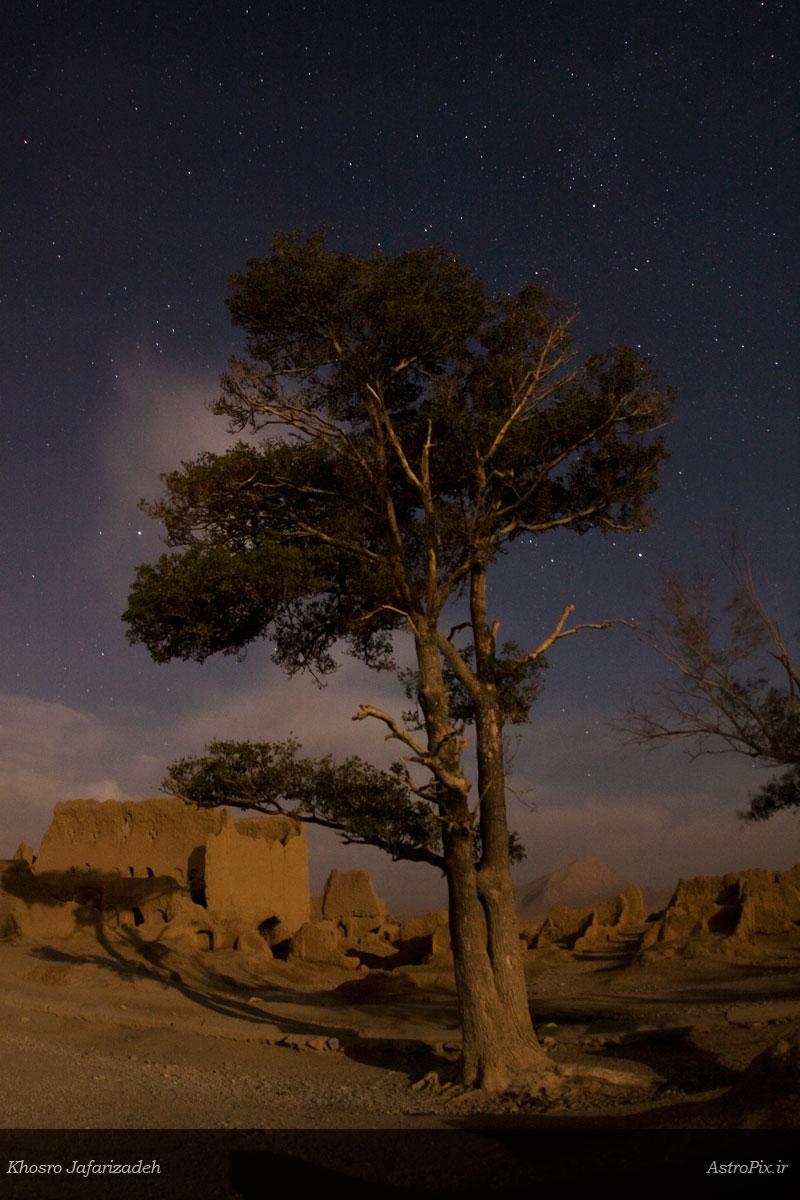 Moon Light in Soghad